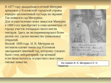 В 1877 году двадцатидвухлетний Мичурин арендовал у Козловской городской управ...