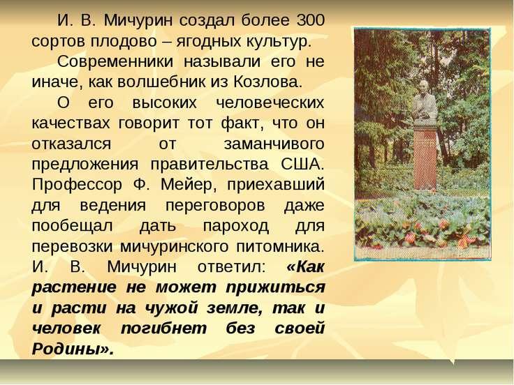 И. В. Мичурин создал более 300 сортов плодово – ягодных культур. Современники...