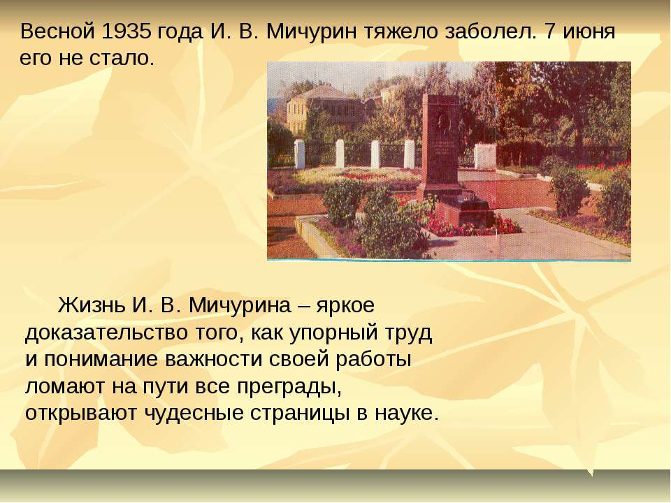 Весной 1935 года И. В. Мичурин тяжело заболел. 7 июня его не стало. Жизнь И. ...
