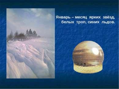 Январь – месяц ярких звёзд, белых троп, синих льдов.