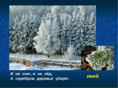 И не снег, и не лёд, А серебром деревья уберёт. иней