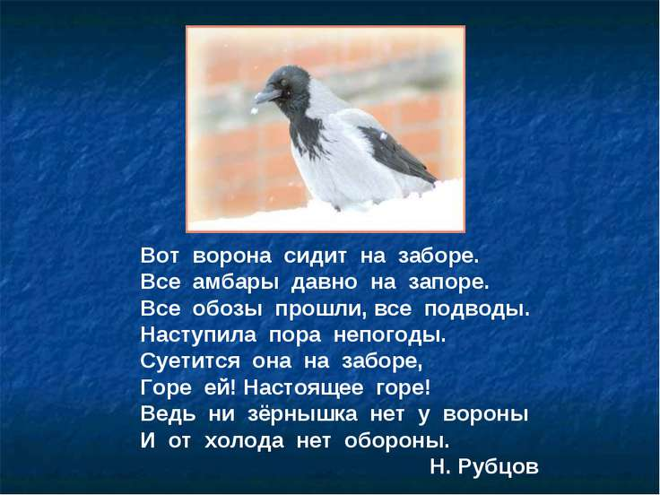 Вот ворона сидит на заборе. Все амбары давно на запоре. Все обозы прошли, все...