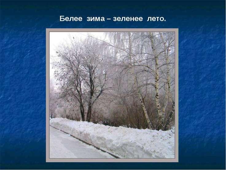 Белее зима – зеленее лето.