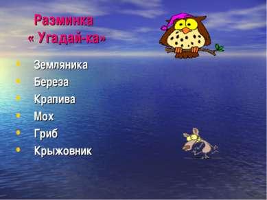 Разминка « Угадай-ка» Земляника Береза Крапива Мох Гриб Крыжовник
