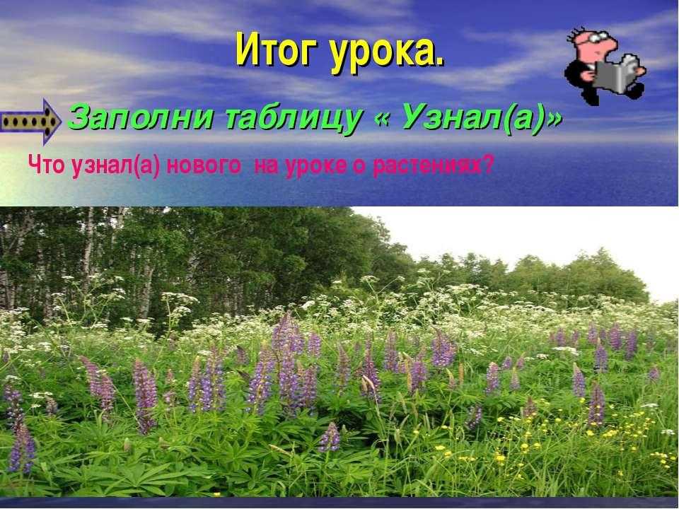 Итог урока. Заполни таблицу « Узнал(а)» Что узнал(а) нового на уроке о растен...