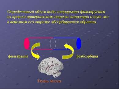Ткань мозга Определенный объем воды непрерывно фильтруется из крови в артериа...