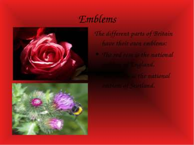 Emblems The different parts of Britain have their own emblems: The red rose i...