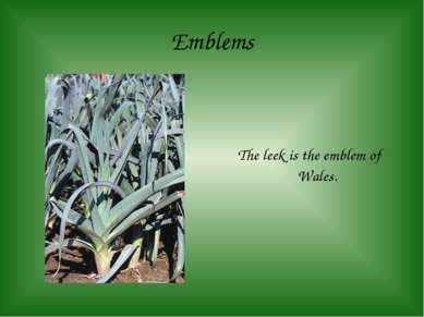 Emblems The leek is the emblem of Wales.