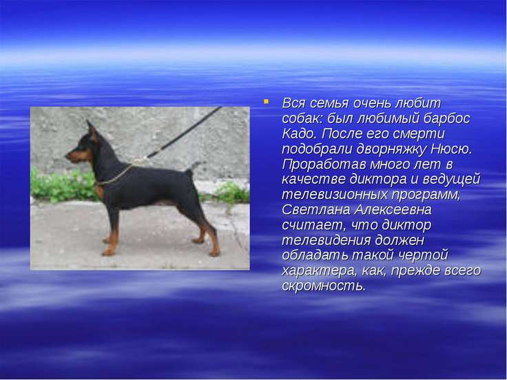 Вся семья очень любит собак: был любимый барбос Кадо. После его смерти подобр...