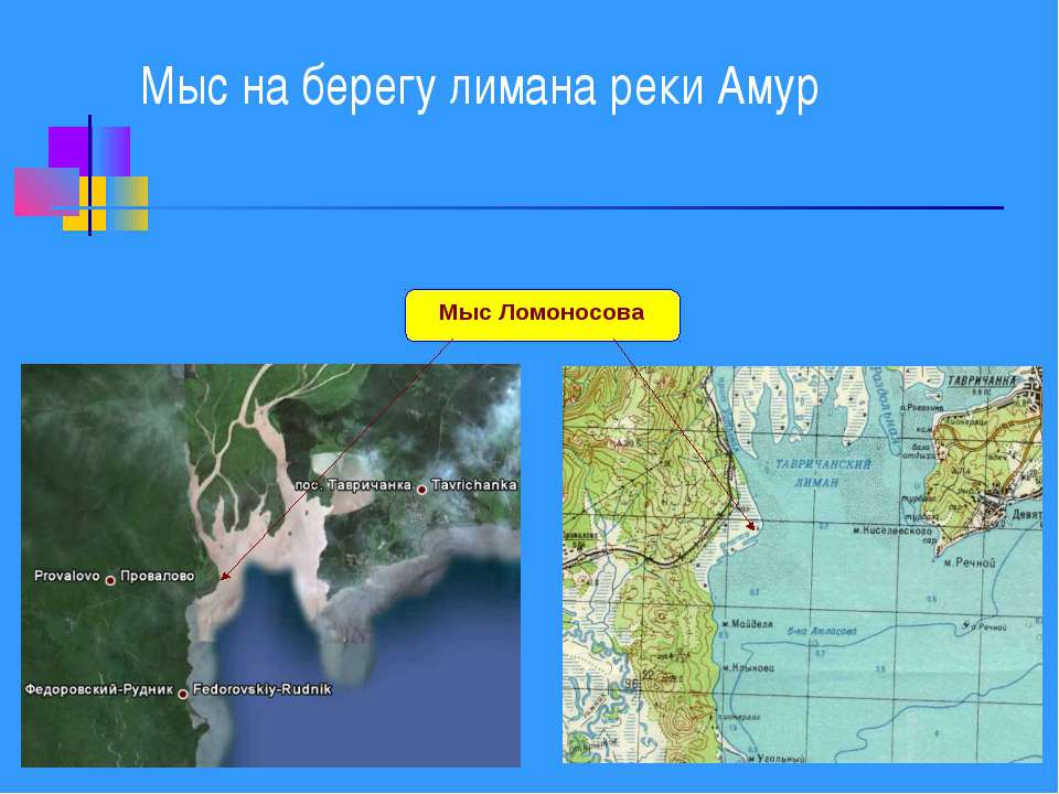 Мыс на берегу лимана реки Амур Мыс Ломоносова