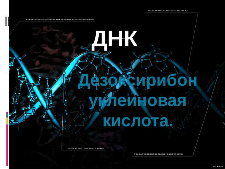 ДНК Дезоксирибонуклеиновая кислота.