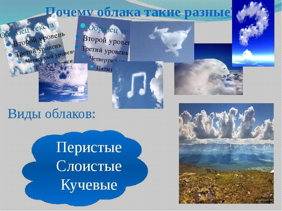 Почему облака такие разные? Виды облаков: Перистые Слоистые Кучевые