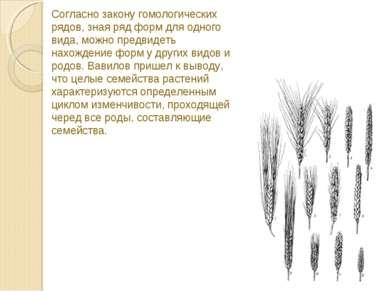 Согласно закону гомологических рядов, зная ряд форм для одного вида, можно пр...