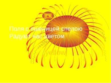 Поля с пшеницей спелою Радуют нас цветом yellow