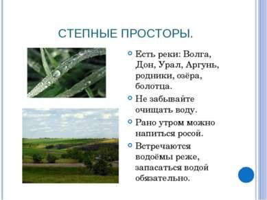 СТЕПНЫЕ ПРОСТОРЫ. Есть реки: Волга, Дон, Урал, Аргунь, родники, озёра, болотц...