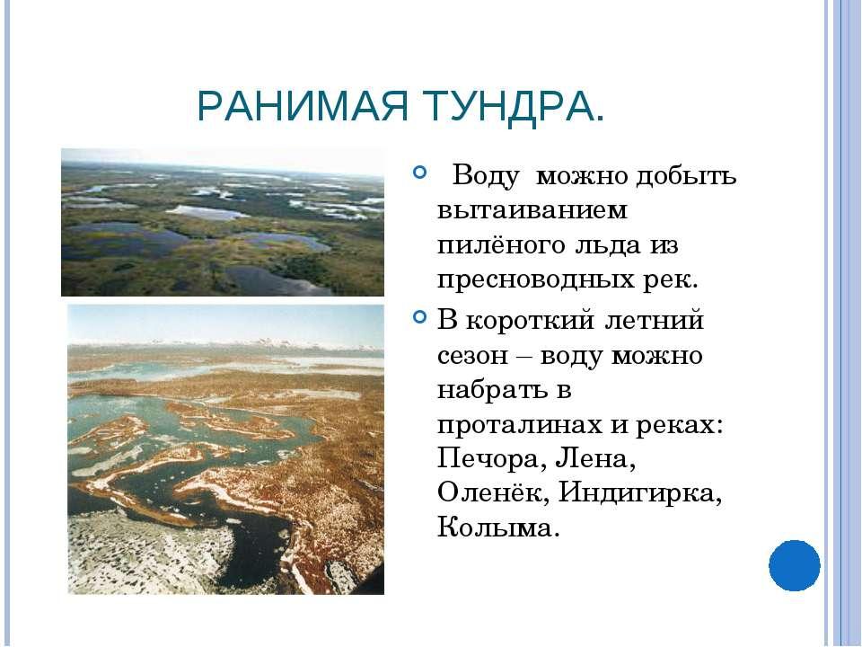 РАНИМАЯ ТУНДРА. Воду можно добыть вытаиванием пилёного льда из пресноводных р...