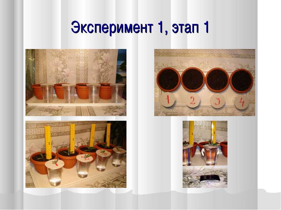 Эксперимент 1, этап 1