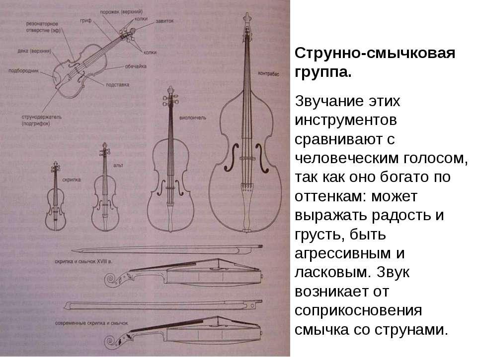 Струнно-смычковая группа. Звучание этих инструментов сравнивают с человечески...