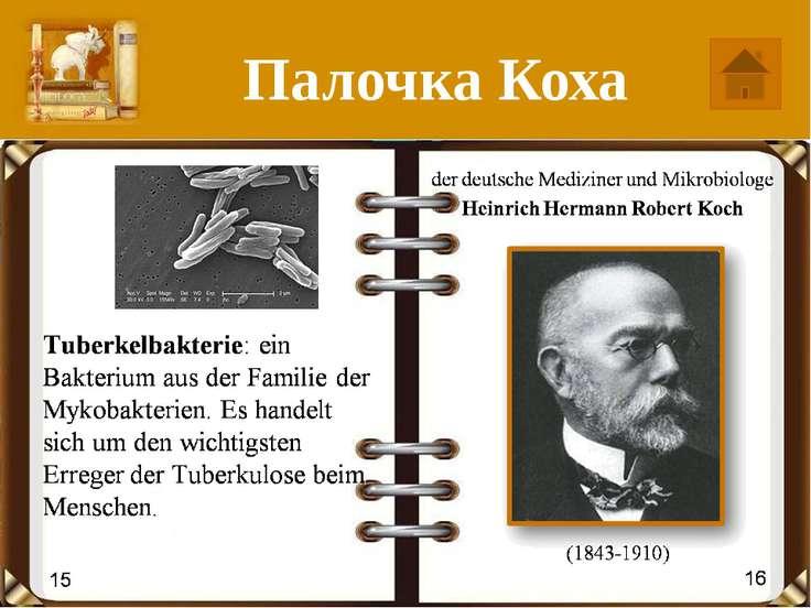 Маузер die deutschen Konstrukteure die Brüder Paul Mauser und Wilhelm Mauser ...