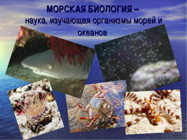 МОРСКАЯ БИОЛОГИЯ – наука, изучающая организмы морей и океанов