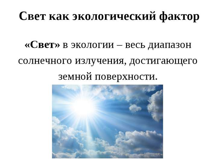 Свет как экологический фактор «Свет» в экологии – весь диапазон солнечного из...