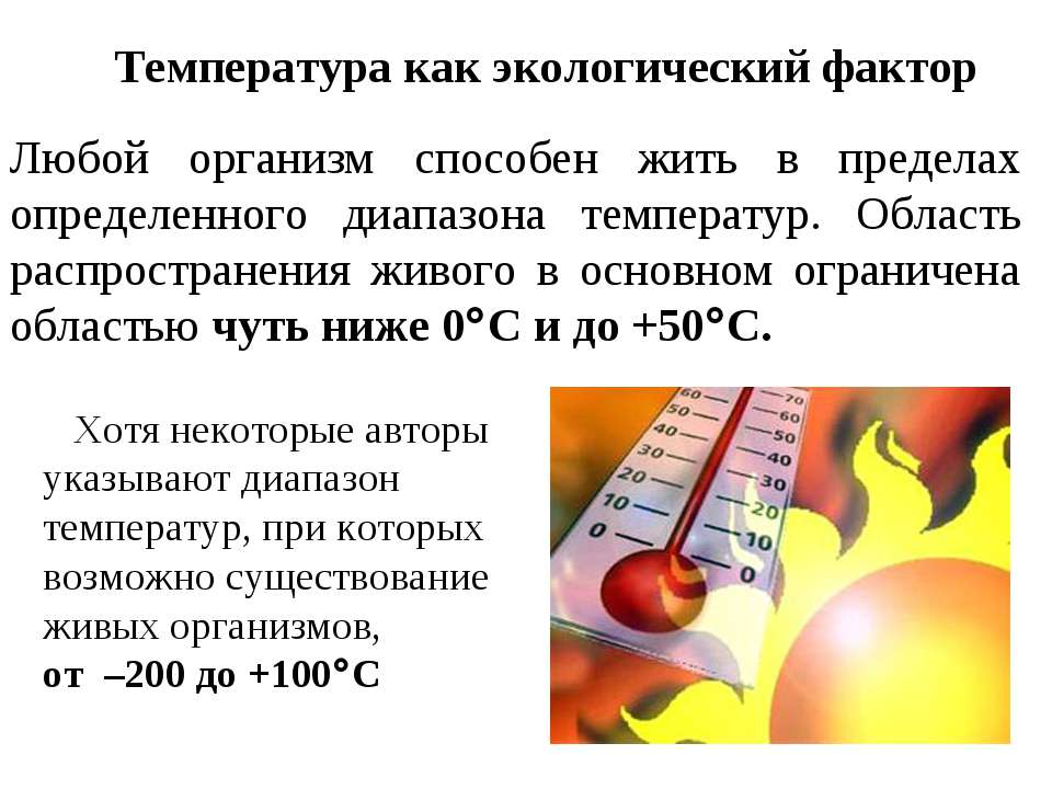 Температура как экологический фактор Любой организм способен жить в пределах ...