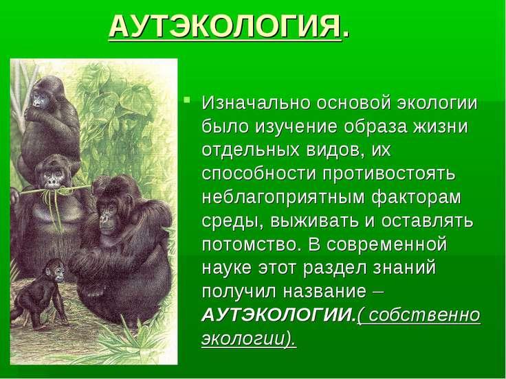 АУТЭКОЛОГИЯ. Изначально основой экологии было изучение образа жизни отдельных...