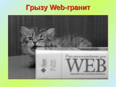 Грызу Web-гранит