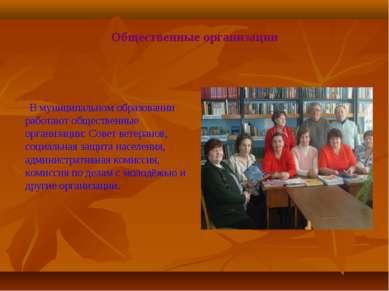 Общественные организации В муниципальном образовании работают общественные ор...