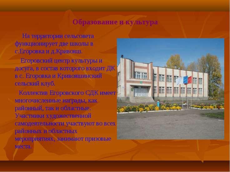 Образование и культура На территории сельсовета функционирует две школы в с.Е...