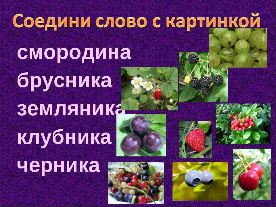 смородина брусника земляника клубника черника