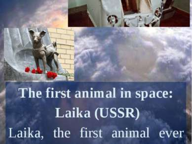 The first animal in space: Laika (USSR) Laika, the first animal ever sent to ...