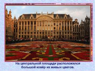 На центральной площади расположился большой ковёр из живых цветов.