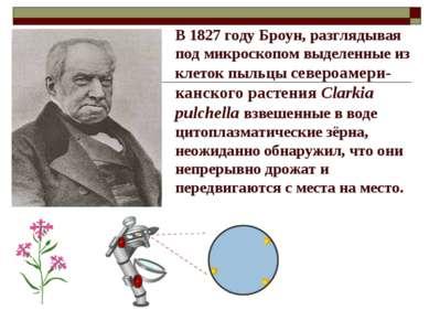 В 1827 году Броун, разглядывая под микроскопом выделенные из клеток пыльцы се...