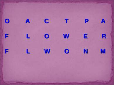 O A C T P A F L O W E R F L W O N M