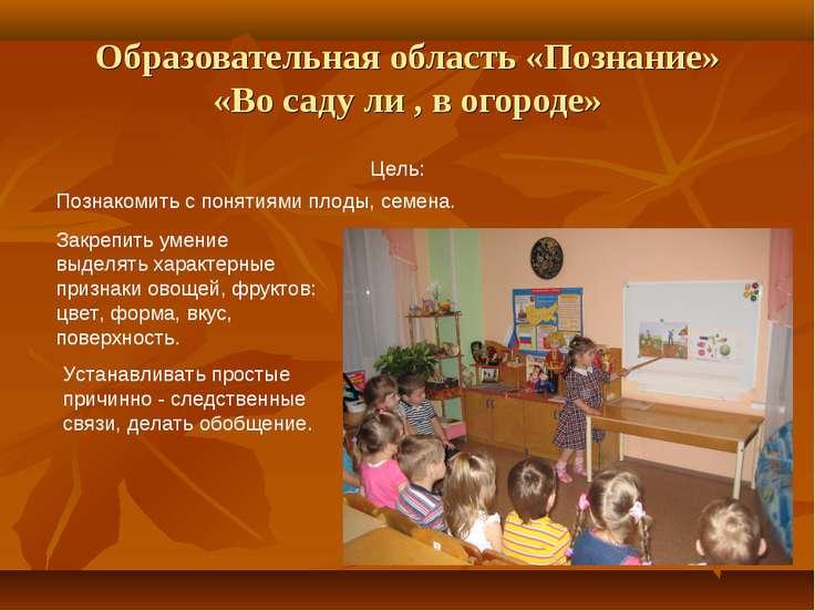 Образовательная область «Познание» «Во саду ли , в огороде» Цель: Познакомить...