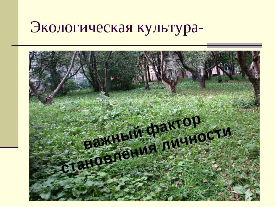 Экологическая культура- важный фактор становления личности
