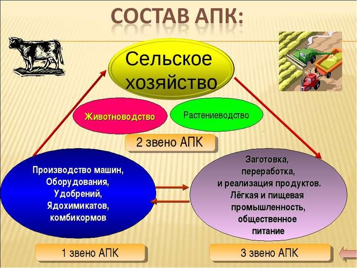Животноводство Растениеводство 2 звено АПК Производство машин, Оборудования, ...