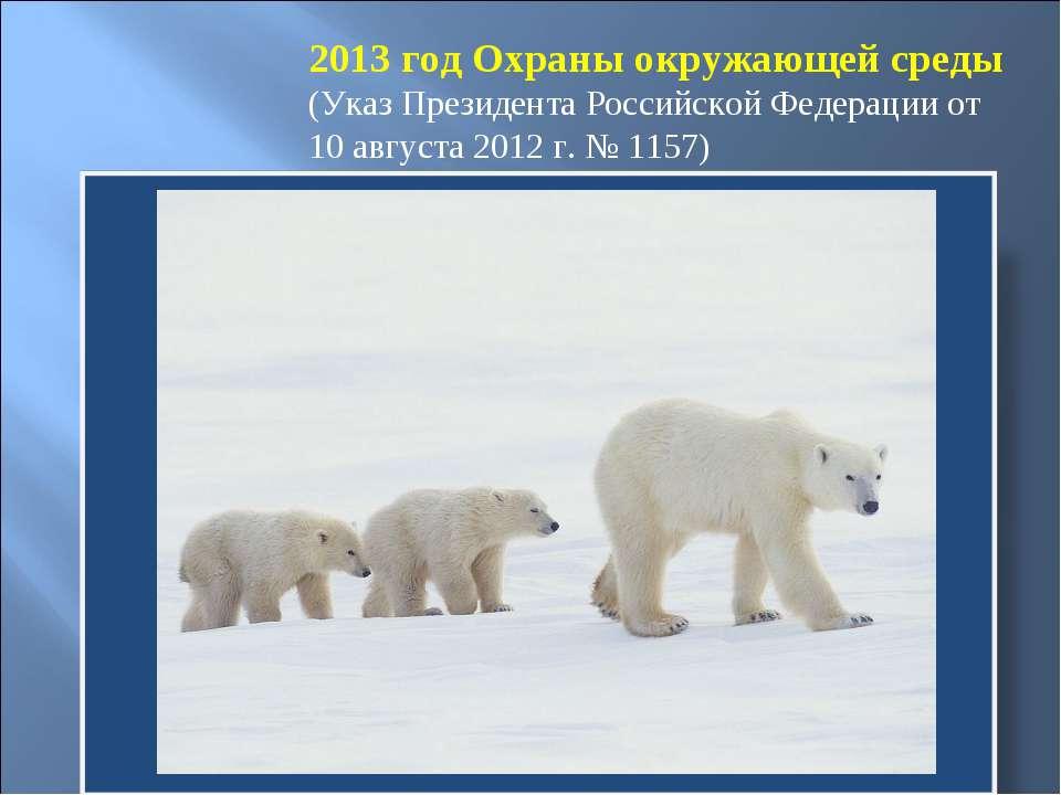 2013 год Охраны окружающей среды (Указ Президента Российской Федерации от 10 ...