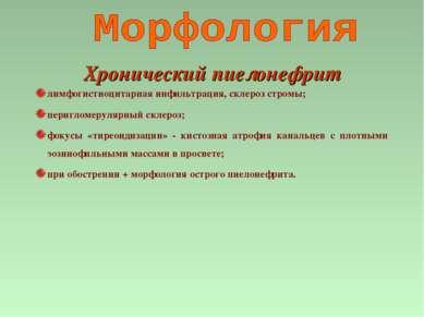 Хронический пиелонефрит лимфогистиоцитарная инфильтрация, склероз стромы; пер...