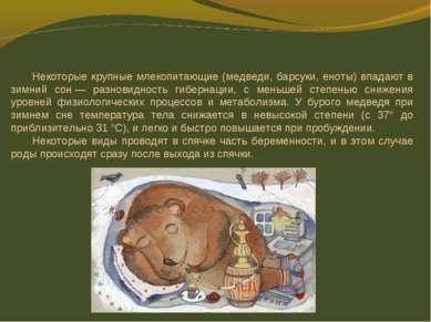 Некоторые крупные млекопитающие (медведи, барсуки, еноты) впадают в зимний со...