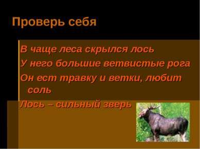 Проверь себя В чаще леса скрылся лось У него большие ветвистые рога Он ест тр...