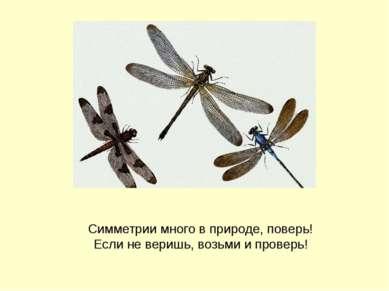 Симметрии много в природе, поверь! Если не веришь, возьми и проверь! Боголапо...