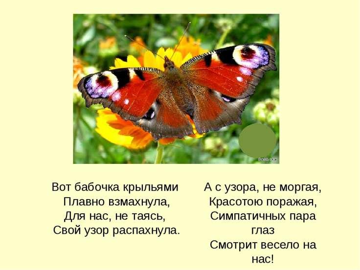 Вот бабочка крыльями Плавно взмахнула, Для нас, не таясь, Свой узор распахнул...