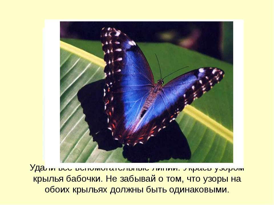 Удали все вспомогательные линии. Укрась узором крылья бабочки. Не забывай о т...