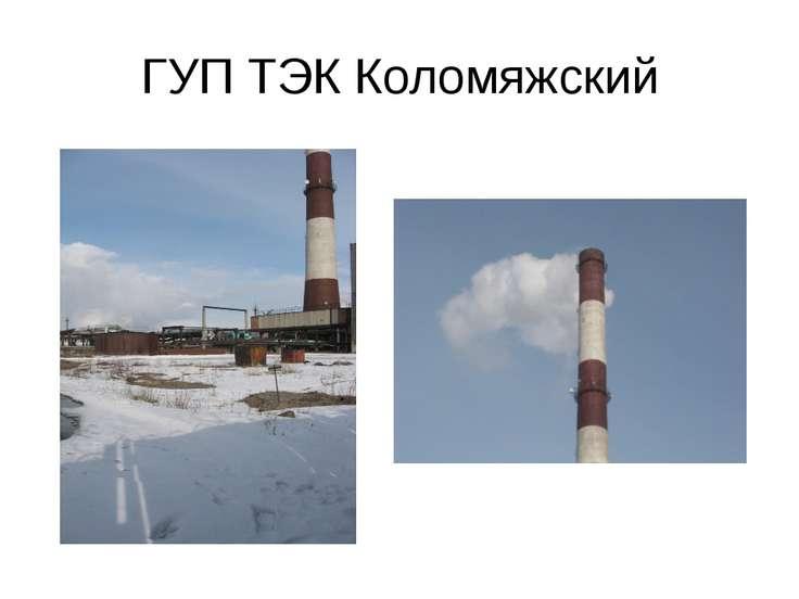 ГУП ТЭК Коломяжский