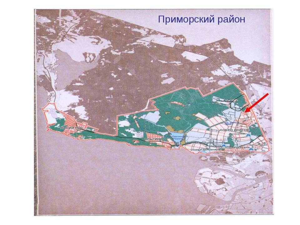 Приморский район