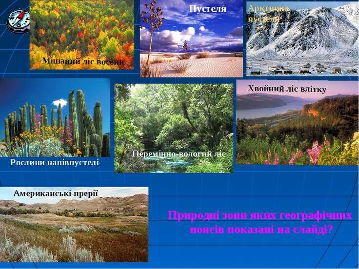 Природні зони яких географічних поясів показані на слайді?