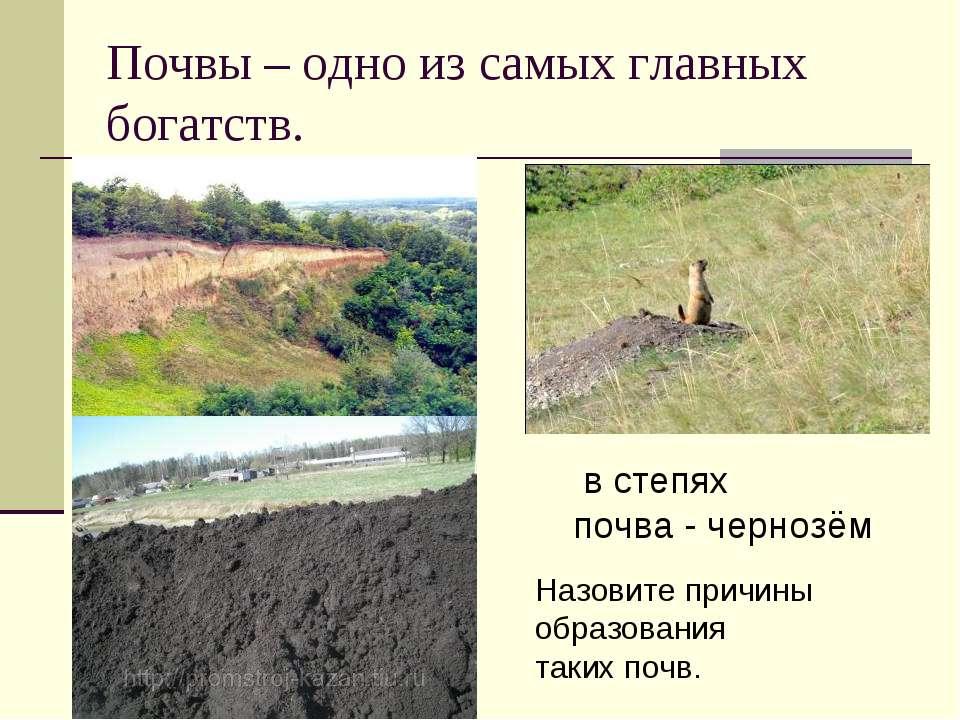 Почвы – одно из самых главных богатств. в степях почва - чернозём Назовите пр...