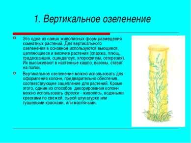 1. Вертикальное озеленение Это одна из самых живописных форм размещения комна...